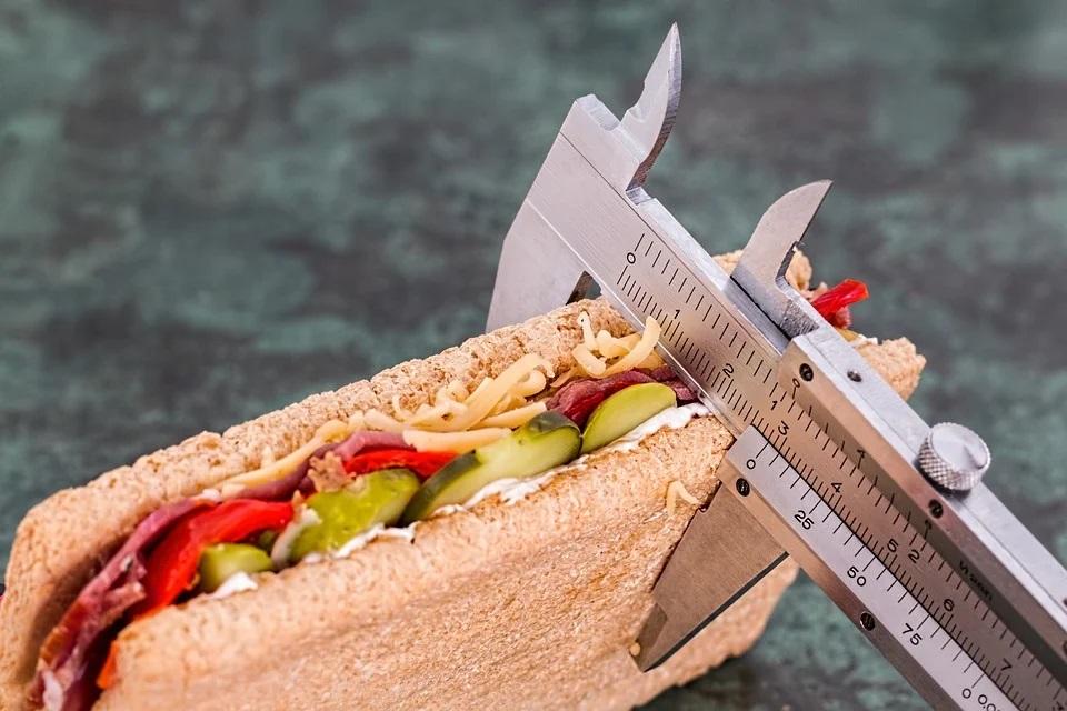 Dietní potrava