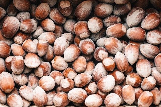 lískové oříšky bychom měli jíst pravidelně